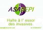 Association des Arracheurs Bénévoles de Plantes Invasives